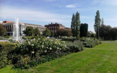 A sunny day in Welwyn Garden City